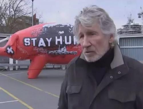 Assange tiene «cero posibilidades» de un juicio justo en EEUU, alerta Roger Waters