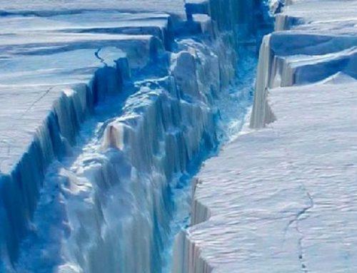 ¡Más de 20 grados! Alarma mundial por récords de calor en la Antártida