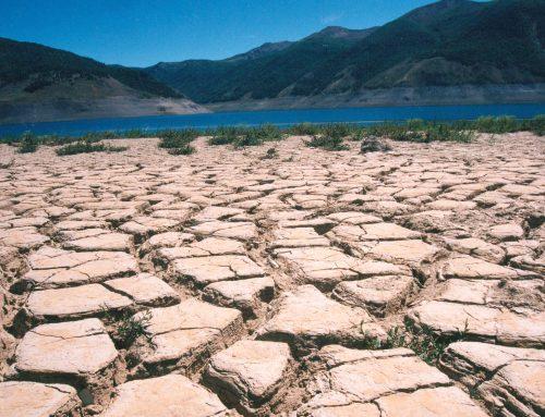 """""""El agua, el recurso que más sufre los impactos del cambio climático"""", afirma el WMO"""