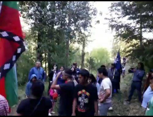 Comunidad Mapuche en Nahuelbuta lucha para salvaguardar su Cordillera