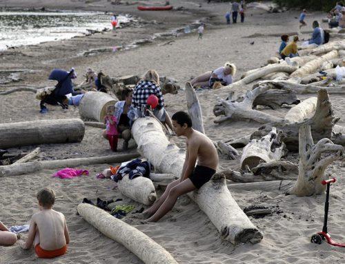 Cambio climático, la otra tragedia: Científicos alarmados por la ola de calor de hasta 38 grados en Siberia