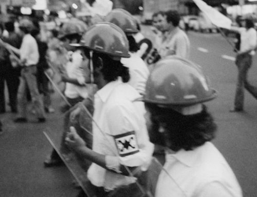 La campaña de 1970: Una acción audaz y una comisión parlamentaria desbaratan la segunda campaña del terror