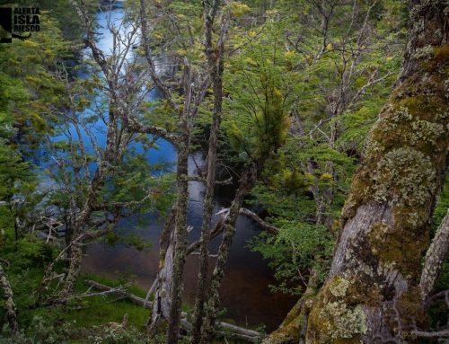 Mina Invierno: Nuevo informe reafirma el rechazo a las tronaduras en Isla Riesco